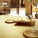 い草 ラグ い草花ござ い草カーペット「水彩」江戸間6畳 (261×348cm) 6帖 インスタイル (inSTYLE)