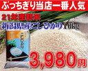 衝撃価格の限界37%OFFセール【21年産新米】新潟県産コシヒカリ10kg【こしひかり】