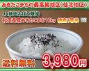 【決算セール27%OFF】秋田県産あきたこまち10kg【送料無料】【JA秋田おばこ限定】
