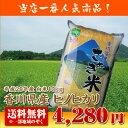【28年産】【送料無料】香川県産ヒノヒカリ白米10kg【ひのひかり】