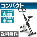 スマイル(SMILE) マグネットXバイク SE9000 クロスバイク エクササイズバイク フィットネスバイク 【送料無料】