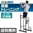 アルインコ(ALINCO) 懸垂マシン FA900ぶら下がり健康器 ぶらさがり健康器 全身ストレッチ 【送料無料】
