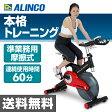 アルインコ(ALINCO) ソールバイク BK1000 スピンバイク エクササイズバイク フィットネスバイク エアロバイク 【送料無料】