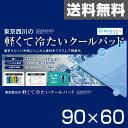 【5%OFF】 東京西川(西川産業) クールエコーエクストラアイス(COOLECHO EX ICE α) 軽量冷感敷きパッド(90×60) PIP0500087B ブルー 西川 シングル 冷却マット ベッドパッド 【送料無料】