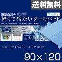 東京西川(西川産業) クールエコーエクストラアイス(COOLECHO EX ICE α) 軽量冷感敷きパッド(90×120) PIP0505087B ブルー 西川 シングル 冷却マット ベッドパッド 【送料無料】