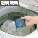 洗濯用浄水剤 銀の力でせんたくものキレイ 送料無料