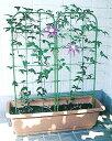 植物の大きさに合わせて、サイズが選べます。フラワースクリーン【75型、26cm×75cm】
