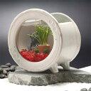 カミハタ 和風アクアリウム 陶器丸水槽セット【おしゃれ おすすめ】 [CB99]