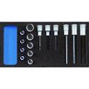 ゲドレー社 GEDORE ビットソケットセット 1500CT1‐IN19LKM 2308932
