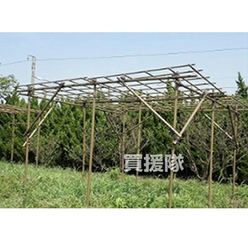 積水樹脂フルーツパーゴラKINGサイズ家庭菜園ネット棚キット園芸支柱用品園芸ネット野菜作り積水樹脂お