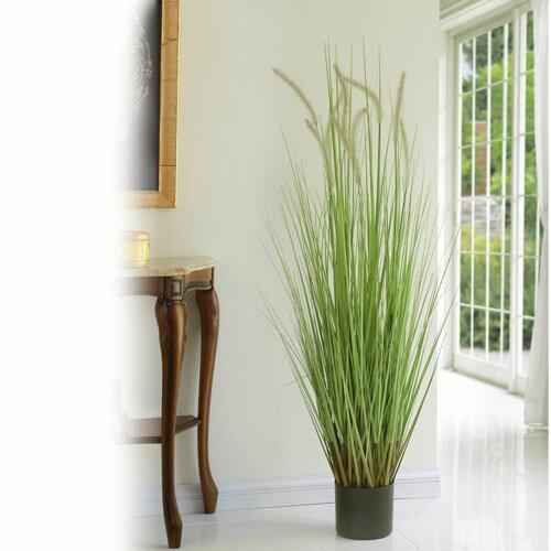 キャッツテールグラス(人工植物) 約122cm ...の商品画像