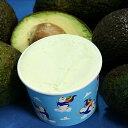 ショッピングアイスクリーム カップアイス アイスクリーム ジェラート アボカドのジェラート・アイスクリーム 「森のバター」と呼ばれるなめらかさと舌の上の食感 魁ジェラートアイスクリーム