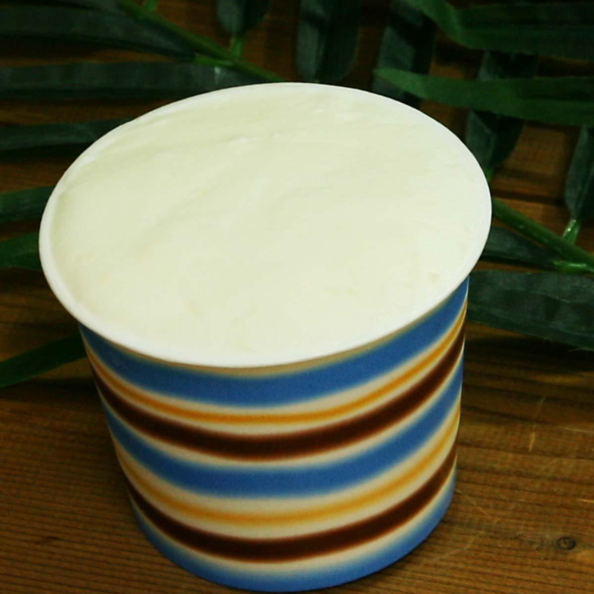 ココナッツのジェラート トロピカルなアイスクリーム カップアイスジェラート  魁ジェラートアイスクリーム
