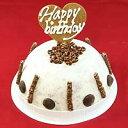 【お誕生日ギフト】チョコチップアイスケーキ