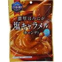 【送料無料】カンロ 濃厚ほろにが 塩キャラメルキャンディ 70g×48個セット