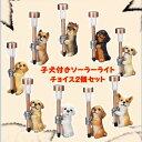 チョイス 子犬付ソーラーライト  2個セット 1個当り1640円 クリスマス イルミネーション オブジェ オーナメント