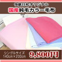 SALE 国産純毛カラー毛布シングル(140×200cm)日本製