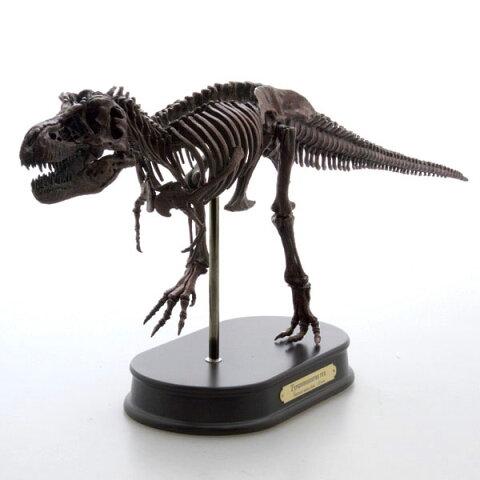 ティラノサウルス スケルトンモデルFDS-601BRFDS601/BR ブラウン 1/20 フェバリットラッピング 熨斗 ジェラシックワールド