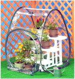 简易温室yard house S尺寸#69501台[簡易温室 ガーデンハウス Sサイズ #6950 1台]