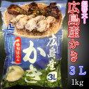 超特価 訳あり 広島産 剥きカキ 3Lサイズ 1kg(24個〜30個入) ひろしま 牡蠣 かき フライ 揚げ物 鍋 安 国産 こくさん わけあり