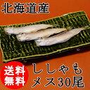 (送料無料)北海道産 ししゃも メス 30尾/特大/子持ち/柳葉魚/クール便