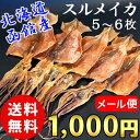 (送料無料) 北海道 函館産 スルメイカ ゲソ付き 160g