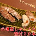 春シャコ 小樽産 メス 殻付20本 蝦蛄 しゃこ 北海道 海...