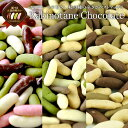 【予約販売】冬季限定チョコたっぷりリッチ仕様柿の種チョコレート選り取り20個まで1配送でお届けメール便【送料無料】