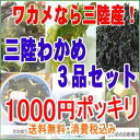 三陸産わかめ3品セット1000円ポッキリ 送料無料 ぽっきり...