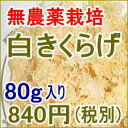 白きくらげ80g 無農薬 白木耳 銀耳 キクラゲ 食物繊維 海藻【20pi】
