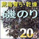 Isonori20-top
