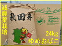 【新米】【送料無料】【減農薬】【無洗米対応】【30年産】【秋田県産】淡麗もちもちゆめおばこ24kg×1袋