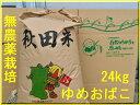 【新米】【送料無料】【無農薬 玄米】【無洗米対応】【29年 秋田県産】淡麗もちもち
