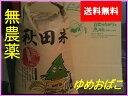 【新米】【送料無料】【無農薬 玄米】【無洗米対応】【28年 秋田県産】淡麗もちもち【ゆめおばこ】30kg×1袋 10P05Nov16