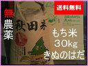 【新米】【送料無料】【28年産】【秋田県産】【無農薬 玄米】【きぬのはだ】安心で美味しいもち米30kg(1袋)10P05Nov16