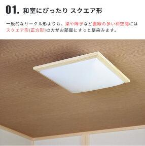 LED������饤�ȥ����������Ȼ�8����WY-FG08QNB/DB��ߥʥ�[Luminous]��LED��⥳���⥳���դ�Ĵ��8���Ѿ�������¼��μ�����ƥꥢ���������˥��ѥ�ӥ��ѿ����ʥ����������뤤������쥷��ץ�ŷ��ۡ�����̵���ۡڥ���ƥꥢ��