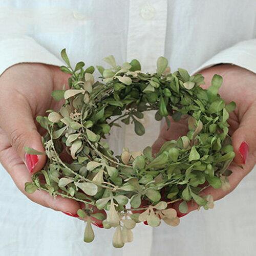 500円クーポン獲得可いなざうるす屋フェイクグリーン落ち葉ガーランドいなざうるすグリーン緑葉葉っぱ落
