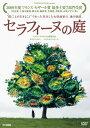 【中古】セラフィーヌの庭 [DVD]/ヨランド・モロー
