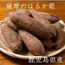 【薩摩のはるか姫】等級A品 有機肥料 紅はるか4kg