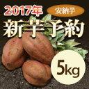 新芋    有機肥料    安納芋   5kg               【等級/A品】鹿児島県産 蜜芋 さつまいも 産地直送 送料無料 紅はるかもあります。
