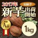 訳なし  有機肥料  新芋 安納芋1kg             【等級/A品】鹿児島県産 蜜