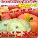 青森県産 幻の蜜入りリンゴ こみつ 10〜12玉入り 高徳を究極の品質に高めた蜜入りりんご。