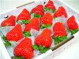 徳島県佐那河内村産さくらももいちご 12粒入り 市場へ出荷されて間もない苺の新品種!甘さ抜群でとっても食味が良いイチゴの逸品! お年賀におすすめ!  発送:2017年1月上旬〜2月上旬の間  配達日指定不可 10P03Dec16