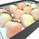 佐賀県産 白いちご 雪うさぎ 大粒12入り 2012年に品種登録された白い苺 爽やか甘さと圧倒的な香りは赤い苺に勝るとも劣らない品質 果汁が多く食味の良さが抜群