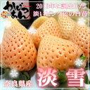 奈良県産 白いいちご 淡雪 大粒24入り 2013年に品種登録された白いイチゴ 佐賀ほのか が突然変