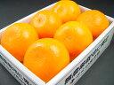 一度食べると美味しさに納得♪柑橘の中で最も美味しい一つと評価される名品・せとか!ホワイトデーにおすすめ