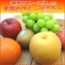 季節のフルーツ詰合せ いろいろな味が楽しめるフルーツセット 旬のフルーツをチョイスしてお届けいたします! 詰め合わせ *北海道、沖縄への出荷には送料別途540円...