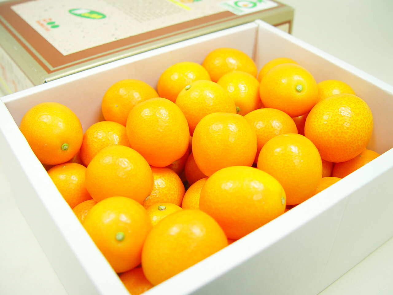 宮崎県産 金柑 たまたま エクセレント 2Lサイ...の商品画像