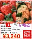 福岡産紅白いちごあまおう&淡雪3〜6粒