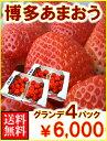 福岡産博多あまおうグランデ4パック送料無料¥6,000
